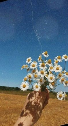 New Wallpaper Backgrounds Summer Vibes Ideas Nature Aesthetic, Flower Aesthetic, Aesthetic Collage, Aesthetic Vintage, Aesthetic Photo, Aesthetic Pictures, Aesthetic Drawing, Spring Aesthetic, Aesthetic Yellow