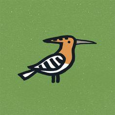 The Birds & The Birds