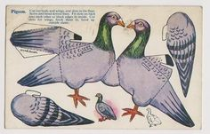 Early Postcard- Novelty Pigeon , Cut Out Card , Nice Card (02/17/2013)