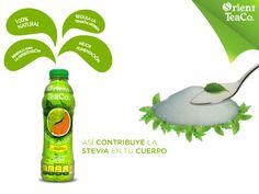 #stevia QUÉ RICO SABE SENTIRSE BIEN. La stevia, es un endulzante100% natural, que se extrae de las hojas de una planta del mismo nombre, a la que se le han encontrado múltiples beneficios, entre ellos es que no contiene calorías, no altera el metabolismo y ayuda a regular las funciones del páncreas. Orient Tea, está endulzado con stevia y por eso puede consumirlo toda la familia. Rico y saludable bienestar, sólo con Orient Tea