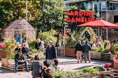 L'innovation sociale et les villes – Les Jardins Gamelin, Montréal - Cities for People