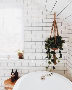 subway tile, wood ceilings, plants