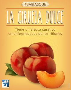 La ciruela dulce tiene un efecto curativo en enfermedades de los riñones #ViveSaludable