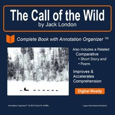 into the wild comparative essay
