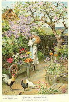 William Stephen Coleman ( British Painter ) 1829 1904 Spring Blossoms an English cottage garden French Cottage Garden, Cottage Art, Paintings I Love, Beautiful Paintings, Art Paintings, Illustration, Spring Blossom, Fine Art, Garden Art