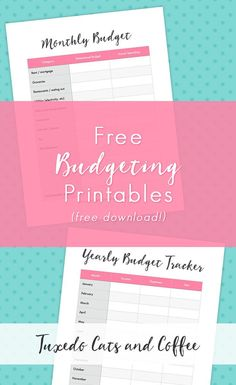 When you're first trying to create a budget, it can be helpful to see what someone else's budget looks like and what categories they use. That's why I created t