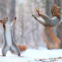 WOW! A Good Catch! by Vadim Trunov
