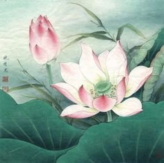 Водяная лилия в китайской живописи. Обсуждение на LiveInternet - Российский Сервис Онлайн-Дневников