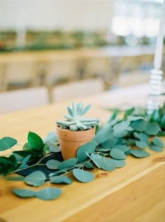 15 Succulent Wedding Décor Ideas for a Desert-Chic Vibe - If you prefer natural greenery to colorful flowers, try adding some succulent wedding decor to your big day. succulent centerpiece greenery {Brooke Borough Photography} Succulent Centerpieces, Wedding Centerpieces, Wedding Decorations, Wedding Ideas, Wire Flowers, Blush Roses, Live Plants, Color Of The Year, Floral Watercolor