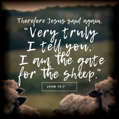 VERSE OF THE DAY I am the good shepherd; I know my sheep and my sheep know me— just as the Father knows me and I know the Father—and I lay down my life for the sheep. John 10 14, Gospel Of John, In Christ Alone, The Good Shepherd, Jesus Is Lord, Verse Of The Day, Jesus Quotes, Bible Verses, I Am Awesome