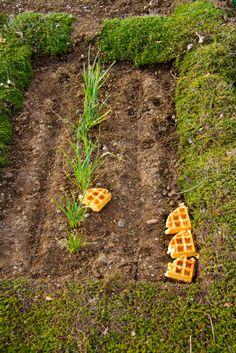 waffle gardening