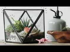 How To Make A Terrarium With Personality | west elm - YouTube