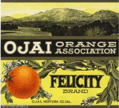 Nordhoff, Ojai, Ventura County, CA - Felicity Orange Citrus Fruit Crate Box Label Advertising Art Print. Ventura County California, California Art, Southern California, Vintage Labels, Vintage Postcards, Vintage Ads, Veggie Art, Vegetable Crates, Printing Labels