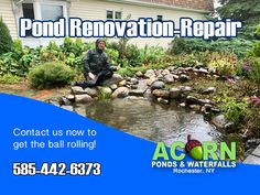 Acorn has the expertise necessary to properly diagnose and repair pond leaks, fix your waterfalls, skimmers, pumps and plumbing, as well as control algae and water clarity issues in and around the Rochester & Western NY areas near you! Small Fish Pond, Pond Maintenance, Rochester New York, Pond Waterfall, Pond Water Features, Finger Lakes, Garden Pond, Greece, Greece Country
