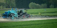 La Commission européenne renonce, pour la troisième fois, à soumettre au vote son projet de réglementation de ces produits chimiques dangereux omniprésents dans l'environnement.