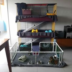 "Upcycle pet store cages to make a multi level piggy palace with front ""yard"" -  fayewalpole's photo on Instagram"
