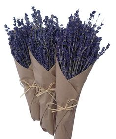 Another great find on #zulily! French Dried Lavender Bouquet Set #zulilyfinds