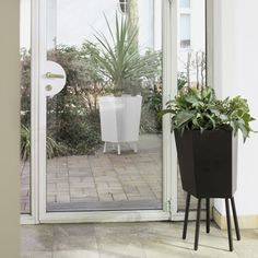 ELEVATION GIANT - Designer Plant pots from FLORA ✓ all information ✓ high-resolution images ✓ CADs ✓ catalogues ✓ contact information ✓ find. Urban Planters, Pots, Flora, Design Bestseller, Potted Plants, Greenery, Furniture Design, Fabricant, Product Design