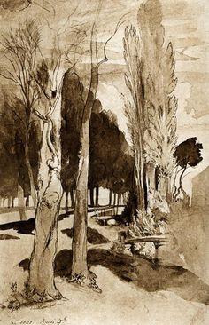 John Ruskin (Brit. 1819-1900), Study of Trees at Sens, 1846, aquarelle