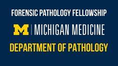 Forensics, Michigan, Medicine, Learning, Studying, Teaching, Medical, Onderwijs