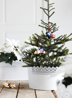 Capture the spirit of the season in your holiday wedding decor.  A small evergreen tree in a SKURAR pot or bowl makes a festive centerpiece.