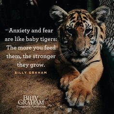 Billy Graham: anxiety & fear