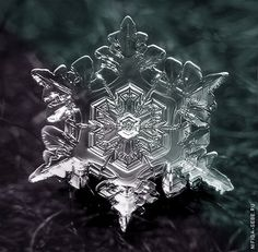 Macro photo of snowflake