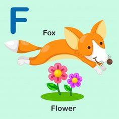 Isolated animal alphabet letter f-fox-flower Vector Image Animal Pictures For Kids, Alphabet Crafts, Preschool Alphabet, Alphabet Letters, Realistic Sketch, Rabbit Vector, Flashcards For Kids, Letter F, Animal Alphabet
