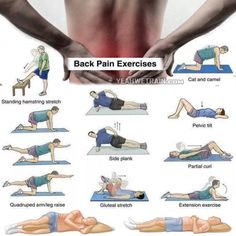 Back Pain Exercises – Healthy Back Workout Training Lower Higher. Injury recovery Back Pain Exercises – Healthy Back Workout Training Lower Higher. Injury recovery Back Pain Exercises – Healthy Back Workout Training Lower Higher. Lower Back Pain Exercises, Lower Back Pain Relief, Low Back Pain, Stretching Exercises, Back Strengthening Exercises, Yoga For Back Pain, Hip Pain, Fitness Workouts, Yoga Fitness