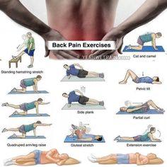 back workout at home - Google-søgning