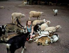 Mãe fotografa filha se relacionando com animais selvagens desde os 3 anos de idade da criança | Panorama Eco