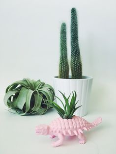 If dino decor is your jam, this pretty, pink air plant holder is just what the gardener ordered.