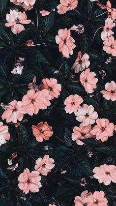 art wallpaper Marvelous Flower Wallpaper for Sytle Your New iPhone Flor Iphone Wallpaper, Iphone Background Wallpaper, Pastel Wallpaper, Tumblr Wallpaper, Aesthetic Iphone Wallpaper, Nature Wallpaper, Aesthetic Wallpapers, Iphone Backgrounds, Screen Wallpaper