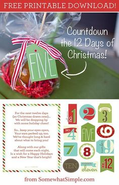 Printable poem and tags for 12 days of Christmas. Great neighbor gift idea and a neat way for the whole family to get involved in giving to others this holiday.