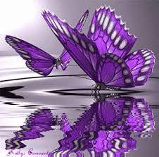 Resultado de imagem para imagem de borboletas brilhantes