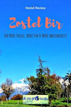 Zostel Bir | Hostels in India | Solo Travel | Backpacking | Reviews | Budget Travel