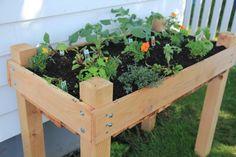 Elevated raised gardening bed