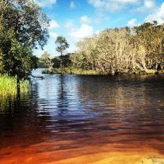 byron bay, tea tree lakes + via lara bingle