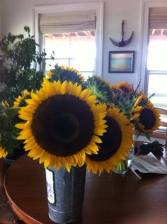 """From seed to table. No exaggeration, this sunflower variety easily measures 10"""" across. Pretty heavy carrying a bucket load back from the field."""