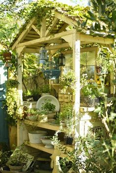 What a fantastic potting table, potting house actually