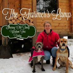 The Farmer's Lamp Answers Your Sourdough Questions #TheFarmersLamp #Sourdough
