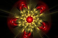 Flower by DiZa-74 on DeviantArt