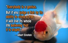 """""""Everybody is a genius. But if you judge a fish by its ability to climb a tree, it will live its whole life believing that it is stupid. Inspirational Quotes With Images, Great Quotes, Excellence Quotes, Albert Einstein Quotes, Quote Of The Week, Fishing Quotes, Mindfulness Quotes, Funny Puns, Worlds Of Fun"""