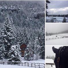 Soooooo looking forward to going here #snow fun #Canada #BritishColumbia #golden #skifun #christmasbreak