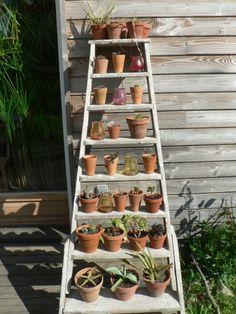 fleurs,terrasse,jardin,jardinières
