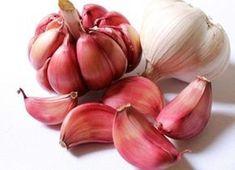 Cesnakový sirup je 10x silnejší ako penicilín a my naňho máme recept. Čítajte! | Báječné Ženy Snoring Remedies, Home Remedies, Natural Remedies, Natural Treatments, Garlic Soup, Raw Garlic, Garlic Bulb, Garlic Head, Organic Garlic