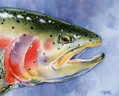 RAINBOW TROUT Fly Fishing Watercolor Signed Fine by k9artgallery, $12.50