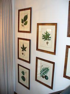 Fotowand gestalten Ideen Pflanzen Bilder