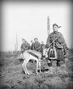 WWI, 17 Feb 1918; 'Nancy', the Springbok mascot of the 4th South African Regiment at the South African Brigade's memorial service at Delville Wood. © IWM (Q 10676)