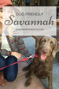 Dog Behavior Dog Friendly Savannah - Finding dog friendly activities can be very difficult. In fact a lot of people will tell you that having a human puppy is a heck of a lot more convenient. Aggressive Dog, Dog Items, Dog Travel, Travel Chic, Travel Usa, Dog Training Tips, Potty Training, Dog Behavior, Dog Care
